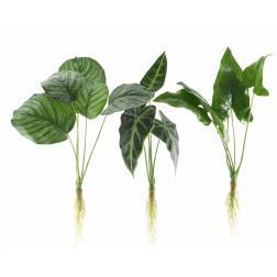 PLANTE PLAST RACINE 50CM